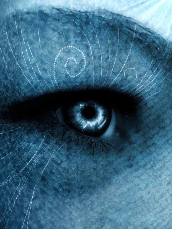 Iris bleu dans Yeux i.-iris-bleu